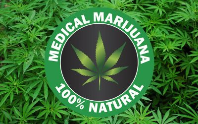 Medical Marijuana Wrongful Termination Attorney
